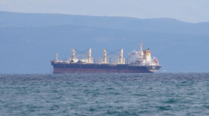 EU-Abgeordnete wollen Schiffe in Emissionshandel einbinden