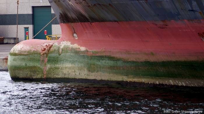 GloFouling - neues Projekt der IMO gegen unerwünschten Bewuchs an Schiffsrümpfen